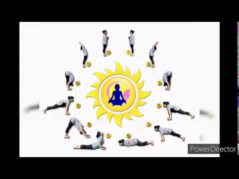 suryanamaskar for beginners tamil  youtube