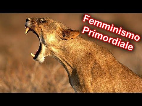 10 SPECIE ANIMALI in cui LA FEMMINA COMANDA