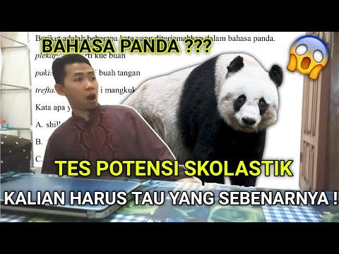 bahasa-panda---tes-potensi-skolastik