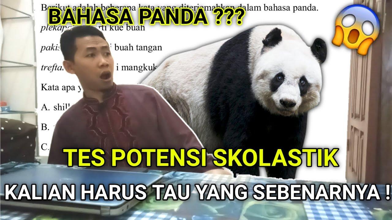 BAHASA PANDA - TES POTENSI SKOLASTIK