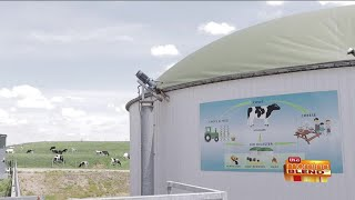 A Wisconsin Dairy Farm Using Green Energy for Sustainability