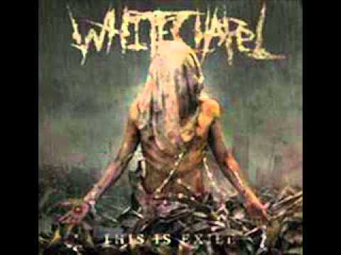 Eternal Refuge- Whitechapel Vocal Cover