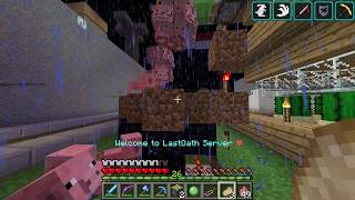 LAUNCHING PIGS IN MINECRAFT!!! |Minecraft lastoath