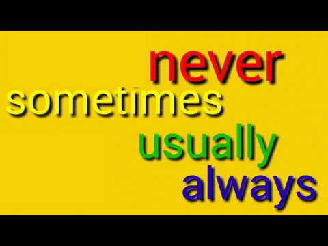 Sometimes Never Always Usually
