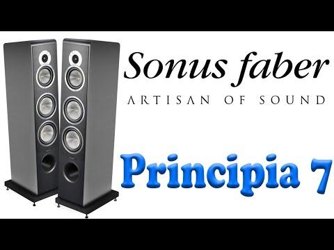 sonus-faber-principia-7.-Конструкция-и-особенности