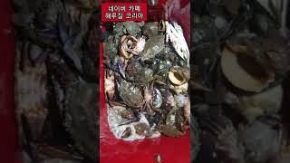 [안면도 해루질][5물 78] 갑오징어. 쭈꾸미. 주먹…