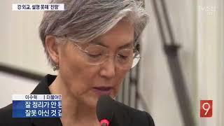 [국감] 전략·전술핵 설명 못해 진땀 뺀 강경화 외교장관