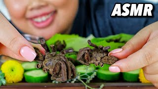 ASMR EATING SPIDERS MUKBANG (EXOTIC FOOD) CRUNCHY EATING SOUNDS + NO TALKING 먹방 EATING SHOW!