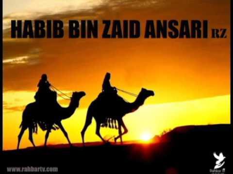 (43) HABIIB IBN ZAID Hqdefault