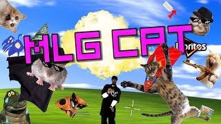 MLG - CATS