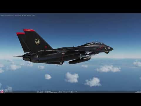 DCS F-14 Razgriz