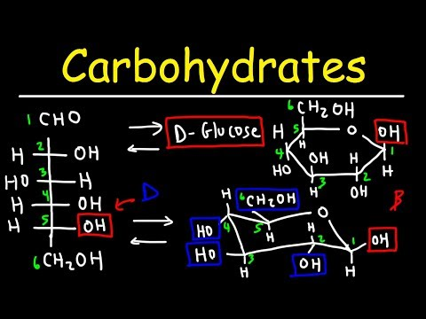 Carbohydrates - Haworth & Fischer Projections With Chair Conformations
