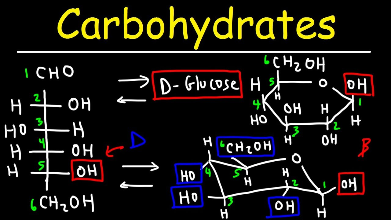 L Glucose Chair Carbohydrates -...
