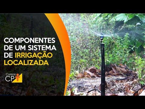 Clique e veja o vídeo Componentes necessários em um projeto de irrigação localizada
