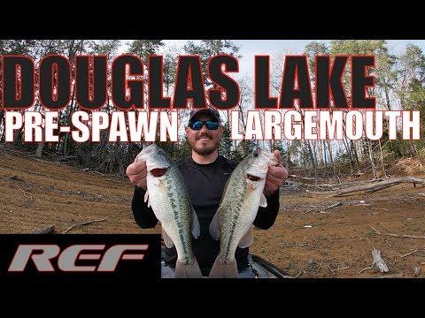 DOUGLAS LAKE: Pre-Spawn BASS Fishing In A Crowded Lake