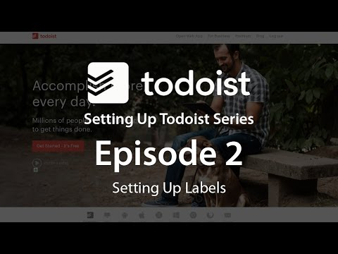 How To Set Up Todoist Episode 2 - Setting Up Labels
