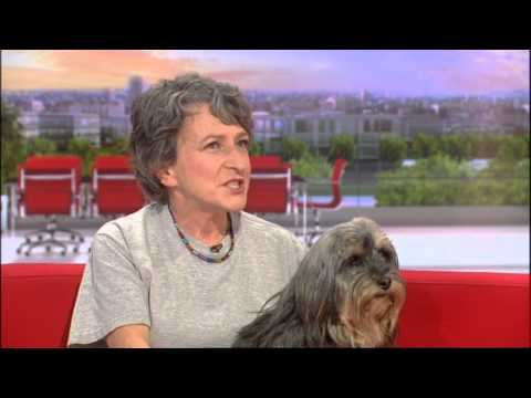 Buddy on BBC Breakfast sofa