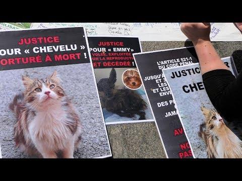 Justice pour Chevelu - Rassemblement de Paris