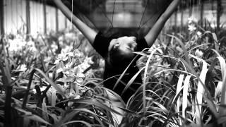 """Cecilia Chailly's """"Aurora"""" e """"Incanto"""" (by Istanti) video  by Raoul Iacometti for Green Attitude"""