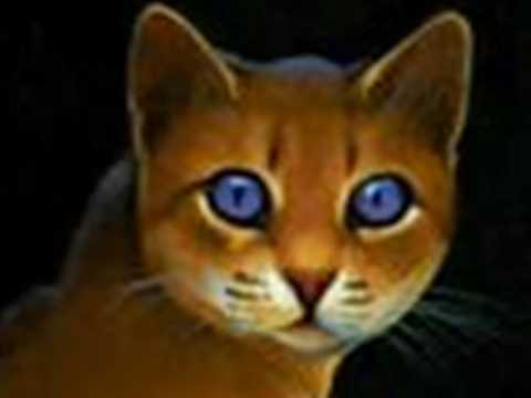 warrior cats free books no download