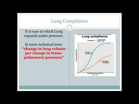 Lung Compliance Youtube