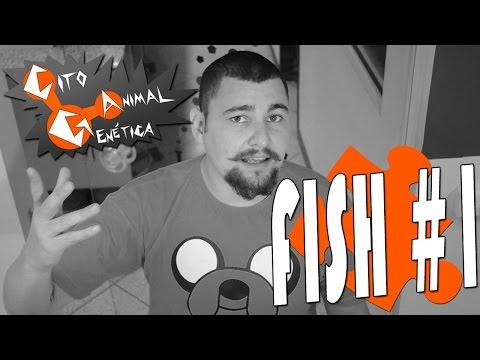 fish-#1