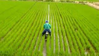 Primitive Technology - World Modern Agriculture Progress