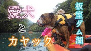 2017年10月9日 那須の板室ダム湖カヌーツアーに参加してきました。 でん...