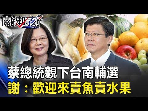 蔡總統親下台南輔選 謝:歡迎一起來賣魚賣水果! 關鍵時刻20190228-5 謝龍介 黃紹庭 林佳新