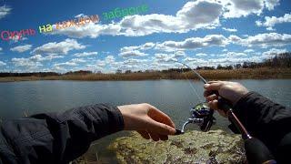 Рыбалка на карьере Пробую новые приманки Нереальный клёв окуня