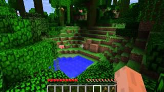 Minecraft kap 1