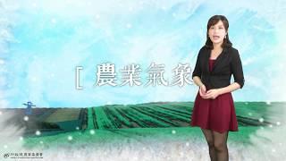 農業氣象1080116