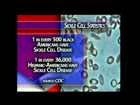 Sickle Cell in the Park helps raise awareness of disease