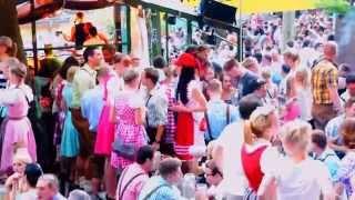 Beer Garden Festival In Erlangen Of Germany