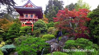 Traditional Chinese Music for Meditation, Relax, Tai Chi Chuan, Qigong, Tui Na, Relax