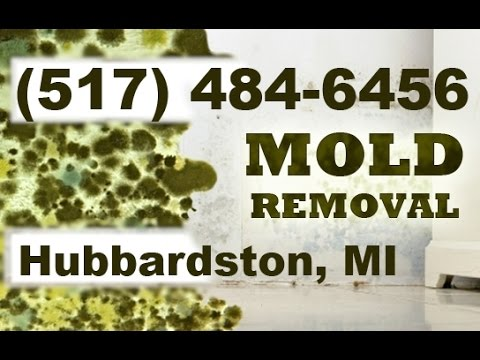 Mold Removal Hubbardston MI (517) 484-6456 | Mold Remediation Hubbardston Michigan