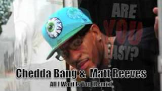 Matt Reeves & Cheddar Bang - All I Want Is You - (remix)