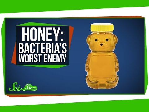 Video image: Honey: bacteria's worst enemy