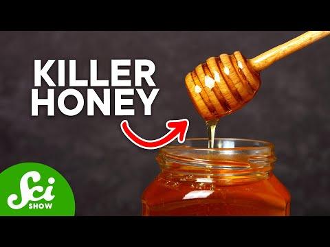 Honey: Bacteria\'s Worst Enemy