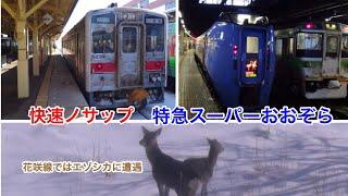 特急スーパーおおぞら1号&快速ノサップ号の旅 札幌→根室 2019.2.5