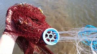 Рыбы много но как её поймать Рыбалка кастинговой сетью