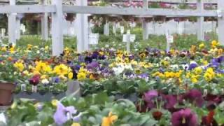 Kelowna Garden Center: The Greenery Garden Centre
