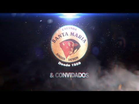 LEILÃO CABANHA SANTA MARIA E CONVIDADOS