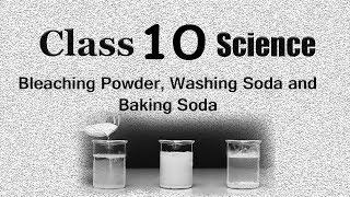 Bleaching Powder | Baking Soda | Washing Powder | CBSE Class 10 X Science