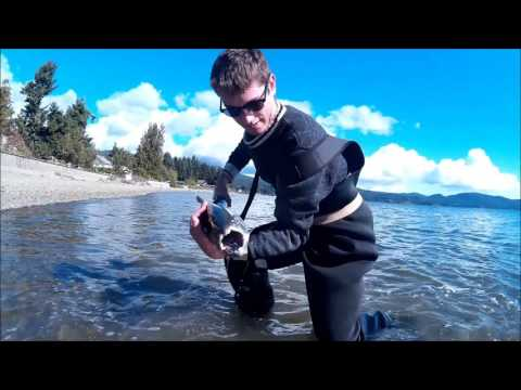 Vancouver Island Shore Fishing For Salmon 2015