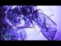 Robin Schulz ft Francesco Yates - Sugar 432hz [Dance]