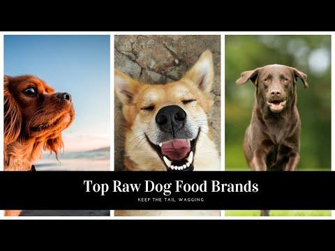 top-raw-dog-food-brands-[2019]