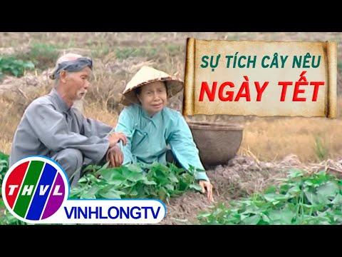 THVL | Thế giới cổ tích – Tập 49: Sự tích cây nêu ngày tết