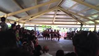 Gisborne traditional maori dance
