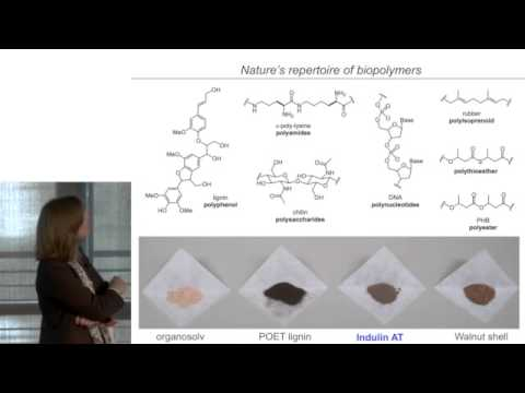 Elizabeth Sattely | Renewable materials and chemistries from plants